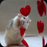 My heart belongs to you...  by Ellen